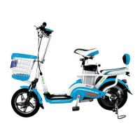 Quality FT-XPG001 Electric Scooter Bike Input Power Supply 220V 50Hz Charger FORZATEC for sale