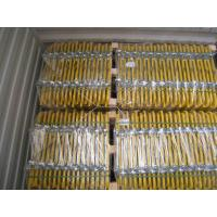 Colored Powder Coated Scaffold Ladder Access Gates For Security Protection