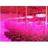 Quality Red/Blue mercury,IR and UV led grow lamp,90w Indoor LED Grow Light(CE&ROHS) for sale