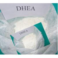 Quality Powerful Sex Hormones DHEA Didehydroepiandrosterone For Male And Female for sale