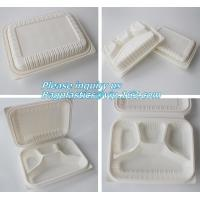 Quality blister packaging Packaging Tray, airline fast food trays with handle, cornstarch food trays for sale