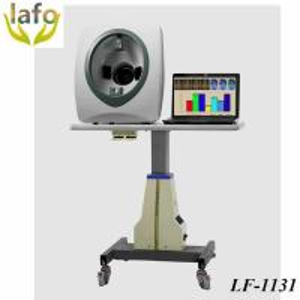 China LF-1131 Newest skin analyzer facial skin diagnostic system, skin analysis equipment on sale