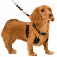 Quality Non Pull No Choke Black Dog Training Halter Harness Easy Step In Vest Collar for sale