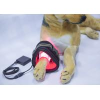Quality Soft Tissue Injuries Cold Laser Therapy Equipment For Pet Dogs CE FCC Approved for sale