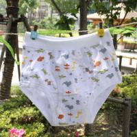 Buy cheap Eco Friendly 100 Polyester Organic Cute Little Kids Underwear for Girls  product