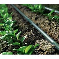 Quality Agriculture Drip Irrigation System Drip Tape ISO9001 factory for sale