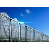 Quality Hollow Glass Style Agricultural Greenhouse With Hot Galvanized Steel Frame for sale