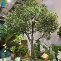 Fiberglass Trunk Artificial Olive Tree Large Size For Outdoor Landscape for sale