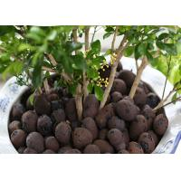 Quality Aquaponic Hydroponic Clay Balls Customized Size Low Energy Consumption for sale