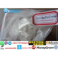 Buy cheap Steroid Powder Oral Turinabol / 4-Chlorodehydromethyl Testosterone CAS No:2446-23-2 product
