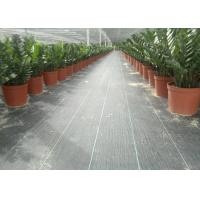 Quality Geosynthetic Fabric PP 130g Black Color 1m Width Weed Barrier For Anti Grass for sale