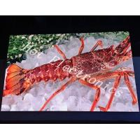 Full Color Small Pixel Advertising Screen Display 64*64 Module For Shop Mall