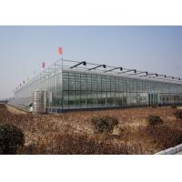 Quality Commercial Glass Greenhouse , Hydroponic Greenhouse With Climate Control System for sale