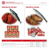 Quality Canned Sardines in Tomato Sauce/Brine 425gx24 Chinese Origin High Quality Manufactory Pric for sale