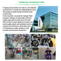 China made 36V 7.8AH Li-ion, Li-polymer battery electrie bike mini folding electric bike