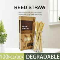 China Natural Bamboo drinking straws/ Eco friendly bamboo straw high quality/ Reed straws with best price on sale