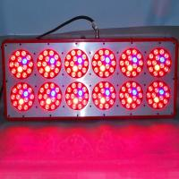 Quality 20% OFF Big promotion factory price led plant grow lights,medical plants growth and flower for sale
