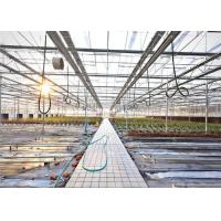 Quality 3 - 5m Gutter Height Hydroponic Greenhouse Great Heat Retaining Property for sale