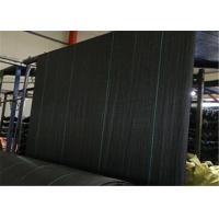 Quality PP Geotextile Landscape Fabric , Black Color Weed Barrier Mat With UV Treatment for sale