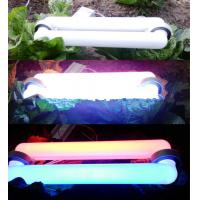 Quality Low Frequency Plant Induction Grow Lights , Electrodeless Induction Lamp for sale