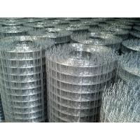 China 1/2inch/ 3/4inch/ 1inch electro galvanized welded mesh hot dipped galvanized welded mesh PVC coated welded wire mesh on sale