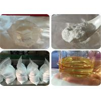 Muscle Growth Steroids Hormone