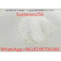 China Mixed Raw Steroid Powders Sustanon250 Testosterone Blend For Muscle Growth 99% on sale