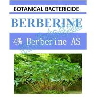 Quality 4% Berberine AS, biopesticide, organic bactericide, botanic, natural for sale
