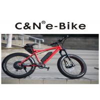 Quality 29PF Panasonic Battery Fat Tire Electric Snow Bike With Electric Motor 200kgs Loading for sale