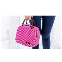 Quality Beautiful Appearance Insulated Lunch Bags 24*17*21cm Dimension Light Weight for sale