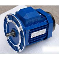 Quality Blue YS Series Frequency Conversion Motor with Aluminum Alloy Housing for sale