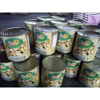 Quality Canned Whole Mushroom In Tins 24*425ml / NW. 425g DW. 200g 180g or Big Size for sale