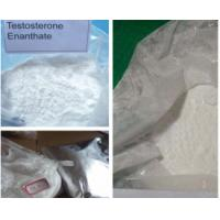 Raw Testosterone Powder Bulking Cycle for sale