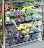 Quality greenhouse aluminuim adjustable side windows & side ventilationHX-L165G for sale