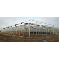 Quality Multi Span Modern Plant Construction Agricultural Greenhouse for sale