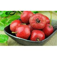 Buy cheap Freeze - Dried Skin Care Supplements Hawthorn Berry Powder Boost Immune System from wholesalers