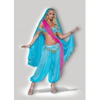 Quality Halloween Women Costumes Exotic Jewel of the East 8048 Wholesale from Manufacturer Directly for sale