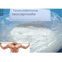 Buy cheap Bodybuliding and Muscle Gaining Testosterone Isocaproate Anabolic Steroids White Powder from wholesalers