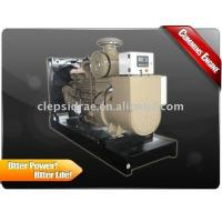 Quality Open Type Water Cooled Diesel Generators for sale