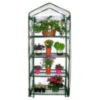 Quality 4 Tiers Greenhouse Garden Greenhouse Warm Greenhouse for sale