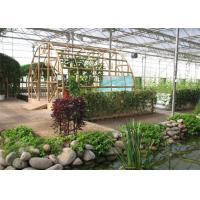 Quality Fish Farming Garden Glass Greenhouse Strong Drainage Capacity 8m*4m Dimension for sale