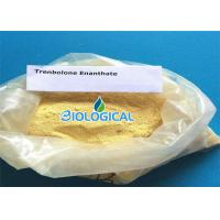 Quality Pharmaceutical Grade Trenbolone Enanthate Powder 10161 33 8 For Muscle Gaining for sale
