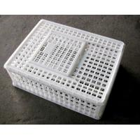 Quality Plastic Low Cost Circulating Moving poultry crate/Cage for chicken-sliding door for sale