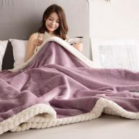 Quality Solid Thickening double layer flannel Blanket 200x230cm Milk velvet coral blanket Blanket for sale