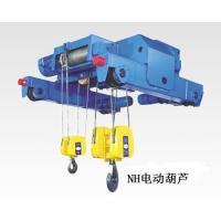 China world advanced wire rope electric hoist on sale