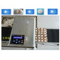 China High Resolution Egg Inkjet Date Code PrinterWith No Need Clean Nozzle on sale