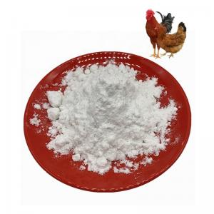 Quality Treating Osteoarthritis White Chicken Sternum Collagen Type 2 for sale