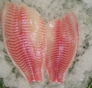 Quality fresh tilapia frozen fish fillets for sale
