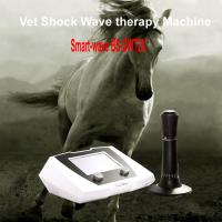 Quality Equine veterinary animal shock wave shockwave therapy equipment machine for horse for sale