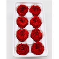 Quality Long Life Preserved Rose Flower Fantastic For Crafting Holiday Ornaments for sale